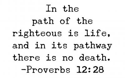 Proverbs 12:28